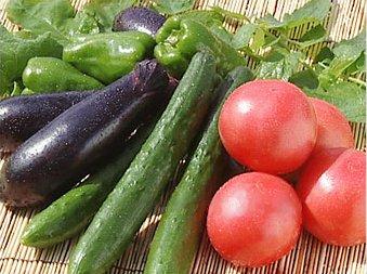 Все ли продукты для сыроедов полезны?