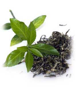 Вред и польза зелёного чая