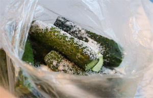 bistrie-malosolnie-ogurci-v-pakete--bez-rassola-recept-foto-4
