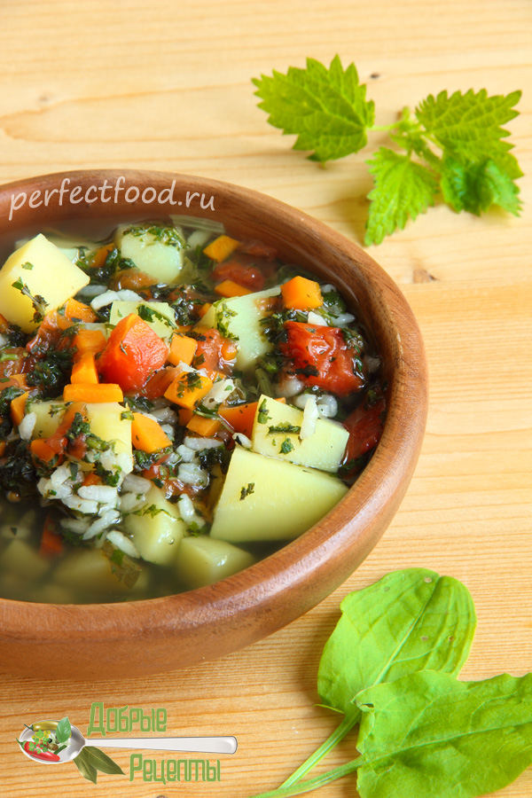 Суп из крапивы и щавеля - рецепт с фото и видео
