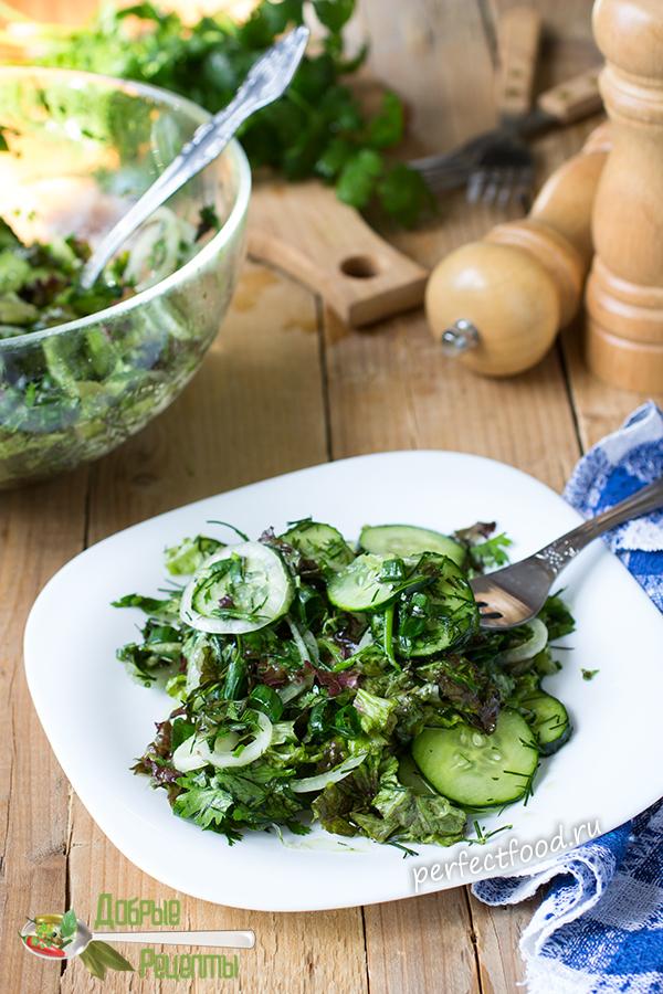 Зелёный салат из огурцов и зелени - рецепт с фото